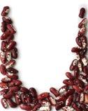 fasole suszą cynaderki czerwień Obraz Royalty Free
