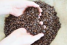 fasole zamykają kawowe ręki kawowy Obrazy Stock
