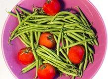 fasole zielenieją pomidory Zdjęcie Royalty Free