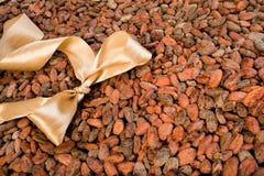 fasoli łęku czekoladowy kakao światło Zdjęcie Royalty Free
