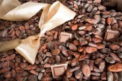 fasoli łęku czekoladowy kakao światło Obraz Stock