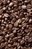 fasoli coffe Zdjęcie Stock