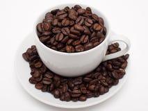 fasoli coffe filiżanka wypełniający biel Obrazy Royalty Free