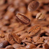 fasoli coffe fragrant smażący Zdjęcie Stock