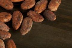 Fasoli kakaowy tło Obrazy Royalty Free
