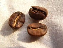 fasoli kawę Zdjęcia Stock