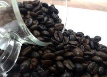 fasoli kawa białe tło Obrazy Stock