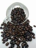 fasoli kawa białe tło Fotografia Royalty Free