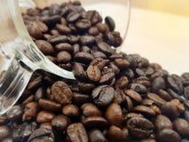 fasoli kawa białe tło Zdjęcia Stock