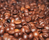 fasoli 2 kawowej Obraz Royalty Free