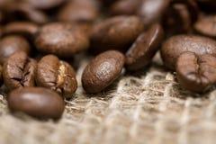 fasoli kawy świeżo piec parciak Obraz Royalty Free