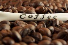 fasoli kawy macro Zdjęcia Royalty Free