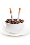 fasoli papierosów filiżanka folował Obraz Stock