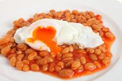 fasoli piec jajko kłusował Obraz Stock