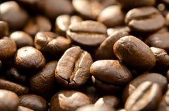fasoli zbliżenia kawa wypiętrzająca Zdjęcia Stock