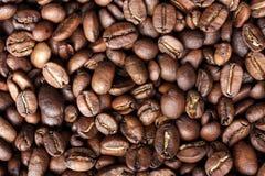 fasoli zbliżenia kawa Fotografia Stock