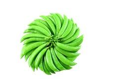 fasoli zieleń Zdjęcie Royalty Free