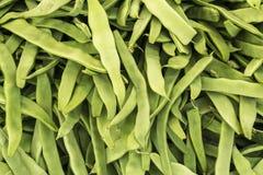 Fasolki szparagowe zdjęcie stock