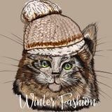 Fasonuje ilustrację z portretem śliczny kot w zimie ilustracja wektor