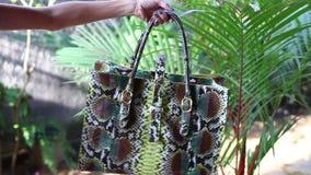 Fasonuje luksusową snakeskin pytonu torebkę w ruchu na tropikalnym ogrodowym tle Bali wyspa zbiory