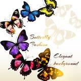 Fasonuje tło z pięknymi kolorowymi motylami dla desig Zdjęcie Royalty Free