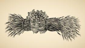 Fass des Hopfens und der Garbe Weizens Stockbild