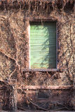 Fassade eines alten Hauses Lizenzfreie Stockfotografie