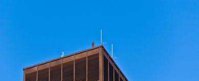 Fassade von Gebäuden mit Eisenmann Lizenzfreie Stockfotos