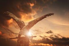 Fassbindervogel mit einer Klinge Stockbild