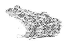 Fassen Sie den Frosch ab, der gemischt wird, um Zahl des Frosches, mit Typografieart zu sein, ISO Stockfoto