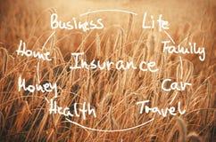 Fassen Sie die Versicherung ab, die auf einem Feld des Weizens bereit, harve zu sein handgeschrieben ist Lizenzfreies Stockfoto