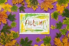 Fassen Sie Fall in ein Album im Rahmen von Blättern ab Lizenzfreie Stockbilder