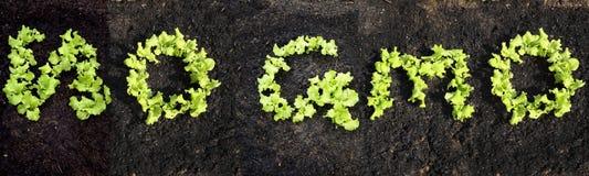 Fassen Sie KEIN GMO ab Lizenzfreies Stockfoto