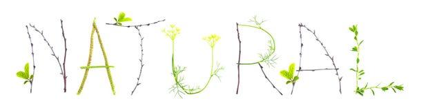 Fassen Sie natürliches gemacht vom Blatt- und Zweigisolat ab Lizenzfreies Stockbild