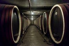 Fassreihen in einer Weinkellerei Lizenzfreie Stockfotografie