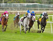 Fast and Accurate with Jose Ortiz stock images