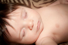 Fast Asleep Stock Images