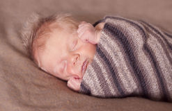 Fast asleep Royalty Free Stock Images