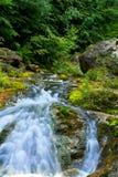 fast bergfloden Arkivfoto