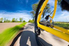 Fast bicycle rear view Stock Image