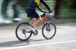 Fast biking. In the park as a recreational activity Royalty Free Stock Image