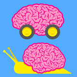 Fast brain on wheels and slow snail brain Stock Images