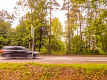 A fast car approaching a pedestrian crossing in the forest royalty free stock images