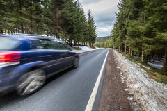 Fast car on a winter forest road Stock Images