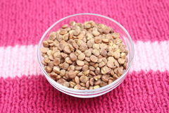 Fast cooking lentils Royalty Free Stock Photography
