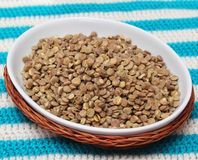 Fast cooking lentils Royalty Free Stock Images