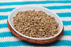 Fast cooking lentils Stock Photography