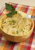 Fast cooking noodles Royalty Free Stock Photography