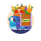 Fast delivery of fresh vegetables. The car with vegetables. Delivery of organic food. Vector illuistration Stock Photography