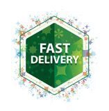 Fast Delivery floral plants pattern green hexagon button royalty free illustration